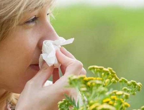 Alergijski rinitis, simptomi, preventiva in zdravljenje