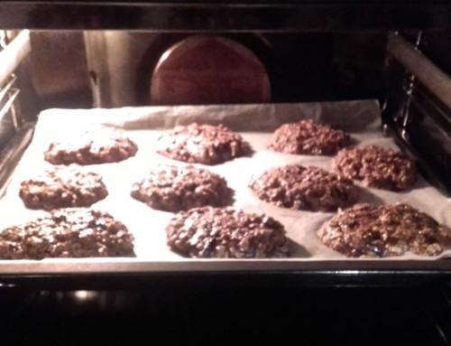 Bio čokoladni piškoti